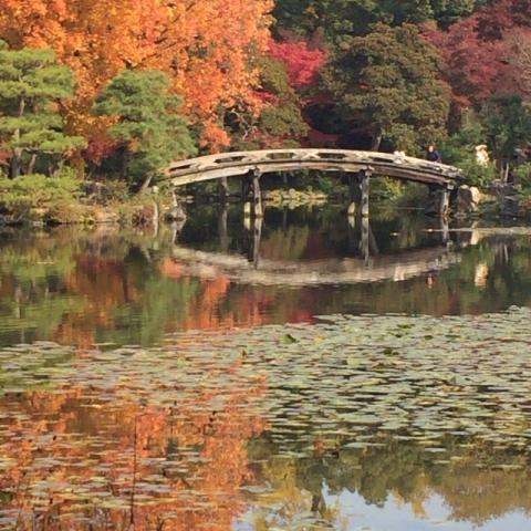 京都の紅葉と源氏物語・・_f0083294_2204441.jpg