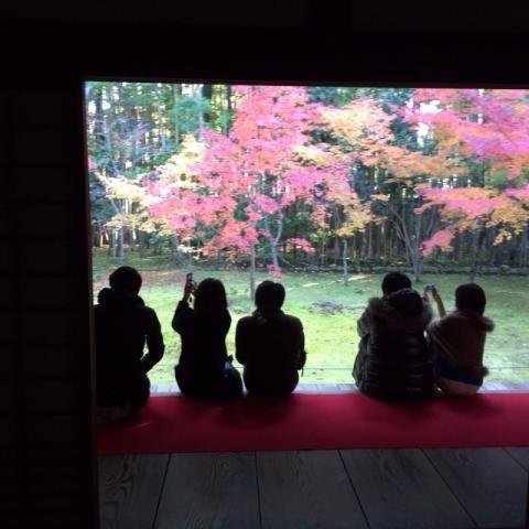 京都、高桐院・・・_f0083294_2213473.jpg