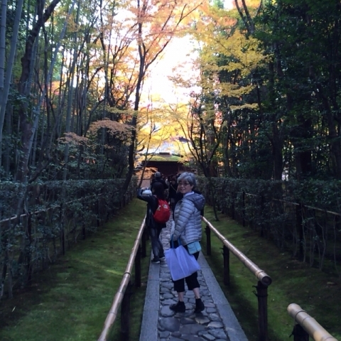 京都、高桐院・・・_f0083294_2293810.jpg