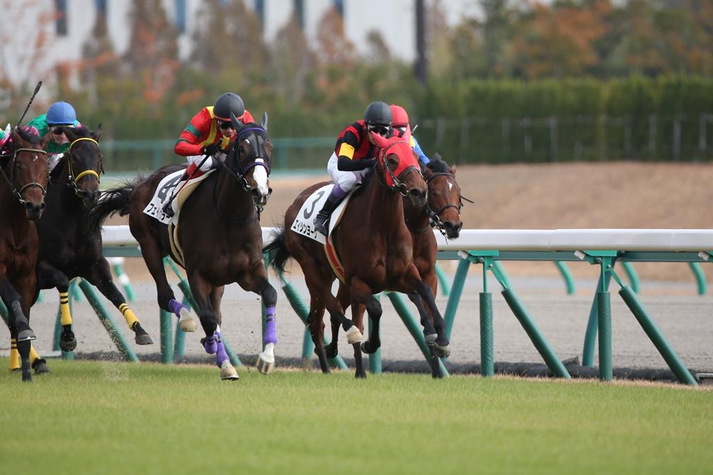 2013年11月30日 金鯱賞_f0204898_205364.jpg