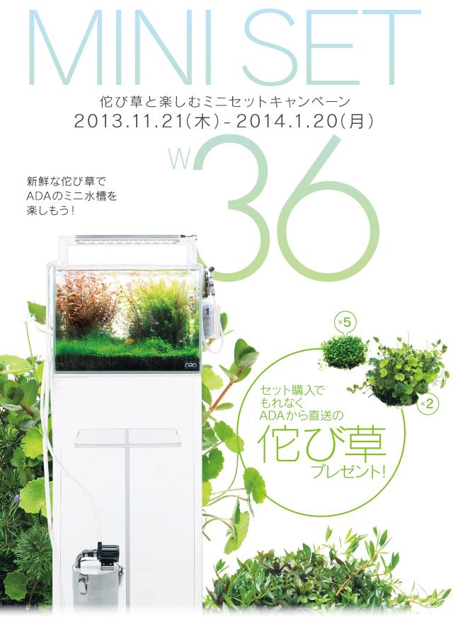 Uni-Aqu ADA News!Vol.13 お得なキャンペーン_b0141806_23331863.jpg