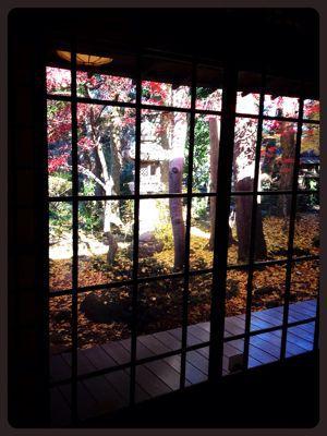 紅葉と風がはこぶ工房展_c0227612_12394577.jpg