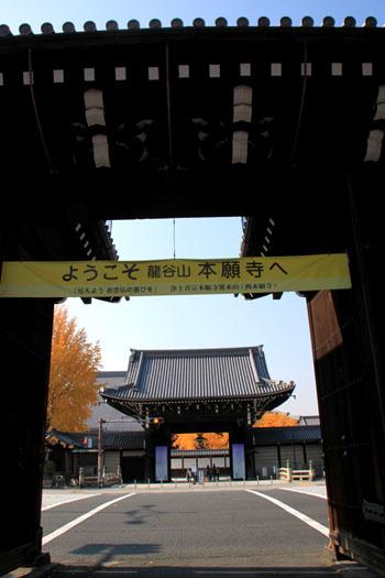 西本願寺 13黄葉だより65_e0048413_20253880.jpg