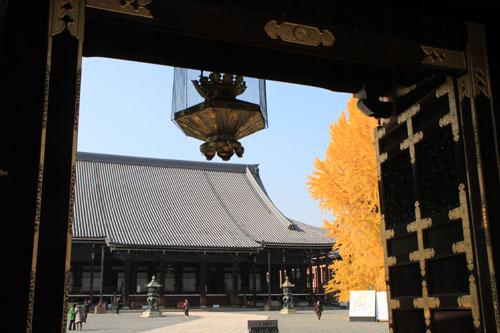 西本願寺 13黄葉だより65_e0048413_20255595.jpg