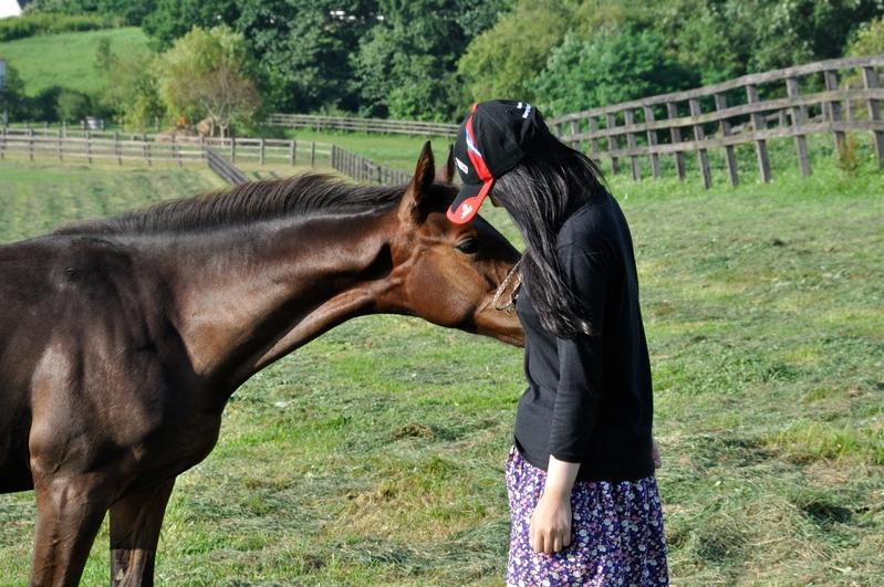 エスポワールシチーは新冠で種牡馬ですよ!!_f0053218_2033713.jpg
