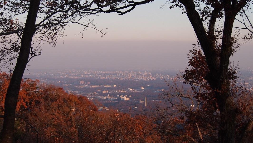 高尾山に行きました。_a0240026_18483873.jpg