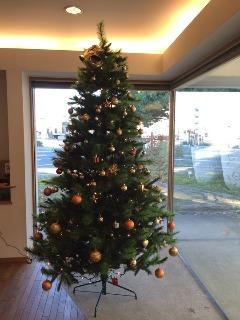クリスマスツリー_b0212031_18464044.jpg