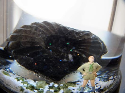 化石スノードーム「冒険心」_f0280238_19535143.jpg