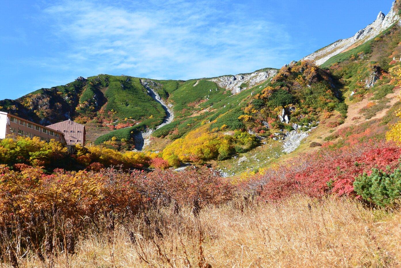 今年の秋は駒ケ岳から_b0115553_109183.jpg