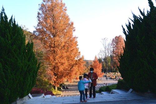 今年の秋は駒ケ岳から_b0115553_1151053.jpg
