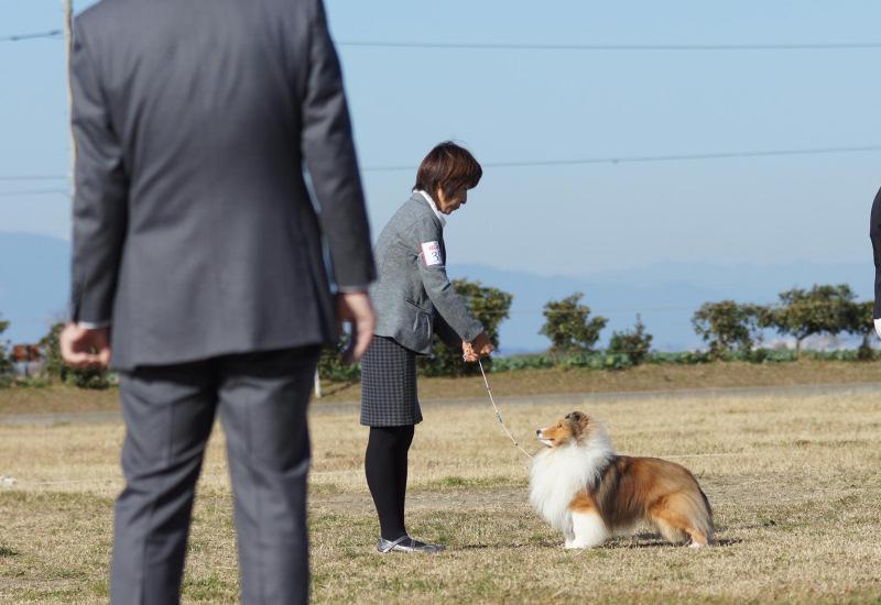 12.1 JCC神奈川展_a0139367_22254041.jpg