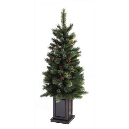 ポット入りクリスマスツリー特別セール価格でご紹介~_f0029571_12274591.jpg