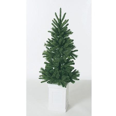 ポット入りクリスマスツリー特別セール価格でご紹介~_f0029571_12583925.jpg