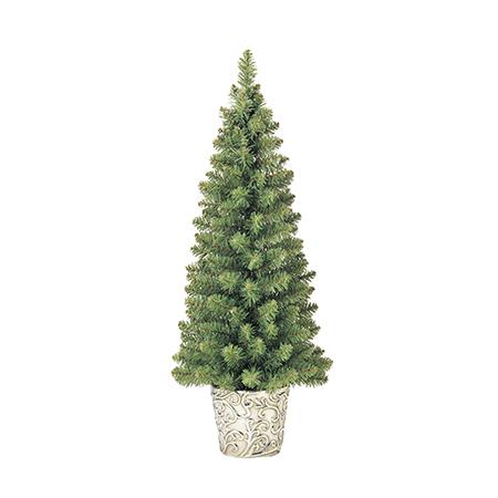 ポット入りクリスマスツリー特別セール価格でご紹介~_f0029571_14163234.jpg