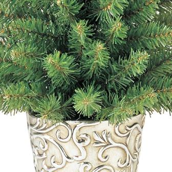 ポット入りクリスマスツリー特別セール価格でご紹介~_f0029571_14215464.jpg