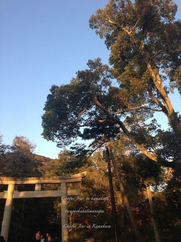 鎌倉散歩_d0266681_923418.jpg