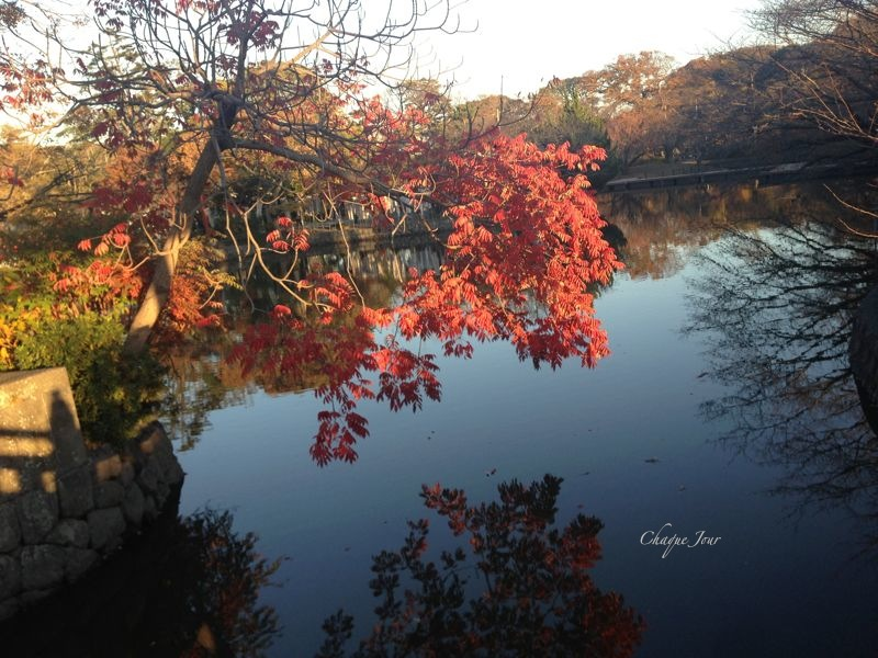 鎌倉散歩_d0266681_9411135.jpg