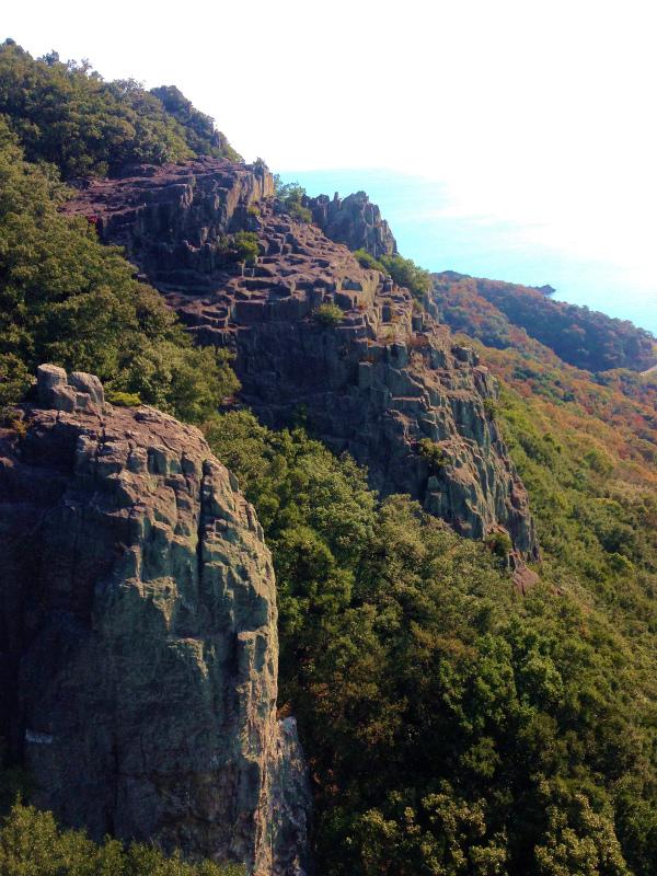 Mountain Running in  Shodoshima 小豆島 Day.2_b0220886_10543997.jpg