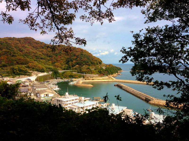Mountain Running in  Shodoshima 小豆島 Day.2_b0220886_11102188.jpg