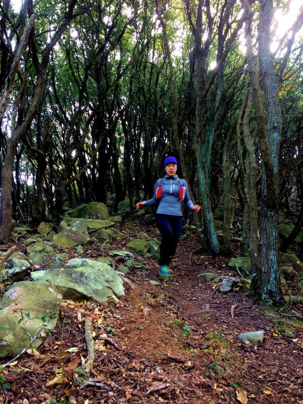 Mountain Running in  Shodoshima 小豆島 Day.2_b0220886_11145.jpg