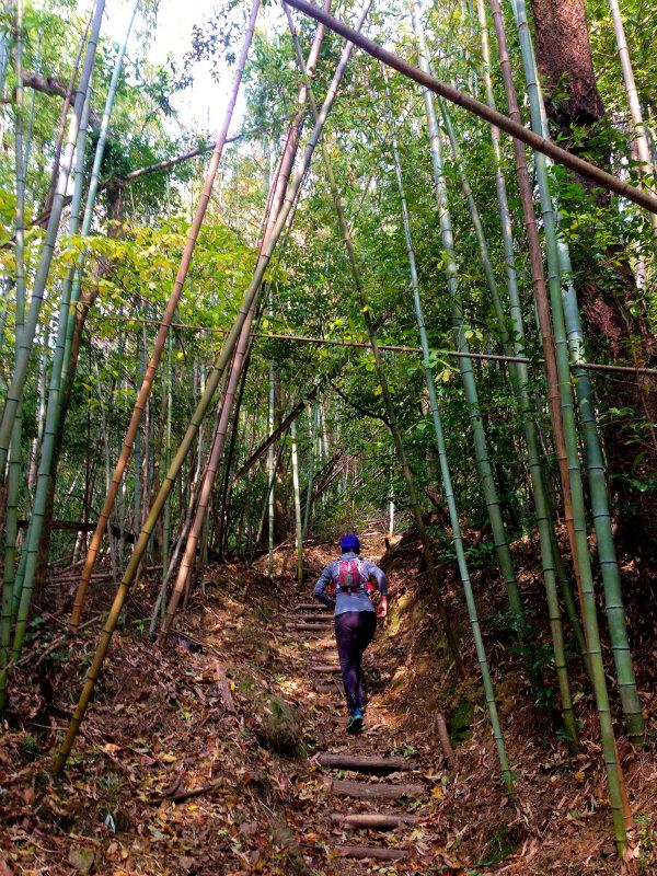 Mountain Running in  Shodoshima 小豆島 Day.2_b0220886_118507.jpg