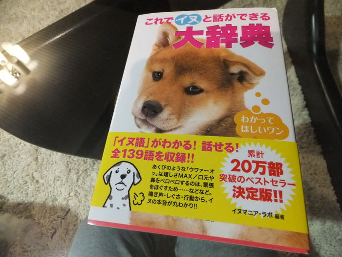 英語→中国語→犬語 スピードラーニング_c0226202_21412767.jpg