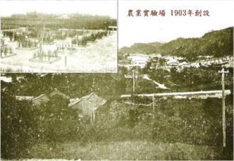 1904年NYTimes記事「日本人が変えた未開の島」:NHK「JAPANデビュー」の反日活動バレた!?2_e0171614_10315399.jpg
