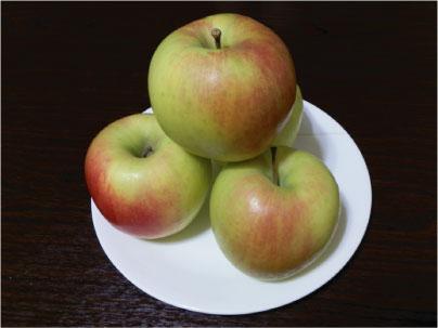 おいしいリンゴ_e0142619_23301899.jpg