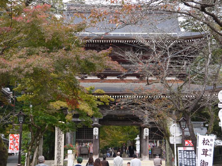 華厳寺に発願の成就を報告:団塊サミットin Gifu 2013③_c0014967_13483520.jpg