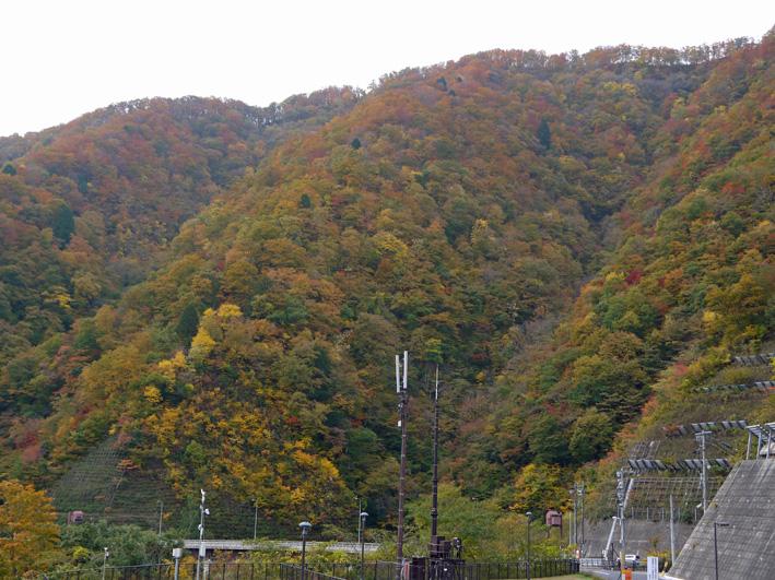 華厳寺に発願の成就を報告:団塊サミットin Gifu 2013③_c0014967_13535898.jpg