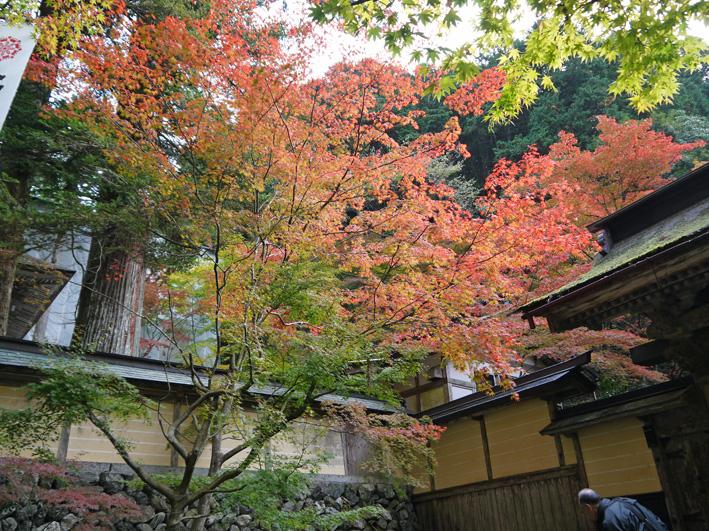 華厳寺に発願の成就を報告:団塊サミットin Gifu 2013③_c0014967_1354599.jpg