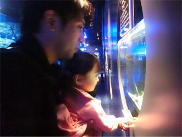 """一加、水族館デビュー☆ (""""イクラ""""のShow!?)_d0224894_2214099.jpg"""