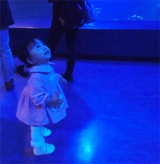 """一加、水族館デビュー☆ (""""イクラ""""のShow!?)_d0224894_2214127.jpg"""