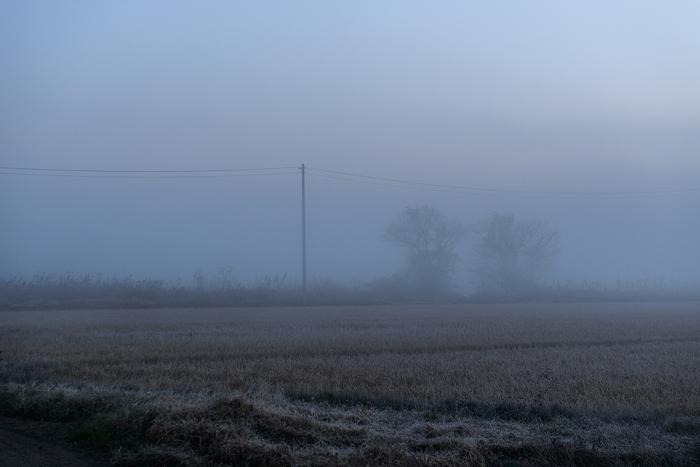 2013年 冬_f0144394_21174415.jpg