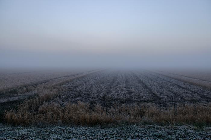 2013年 冬_f0144394_2192848.jpg
