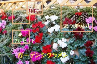 f0203094_154723100.jpg