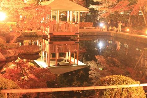 【散撮】昼と夜の紅葉_f0141609_2051478.jpg