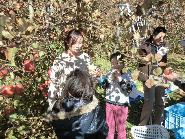 川場のリンゴ狩り_c0072816_7415139.jpg