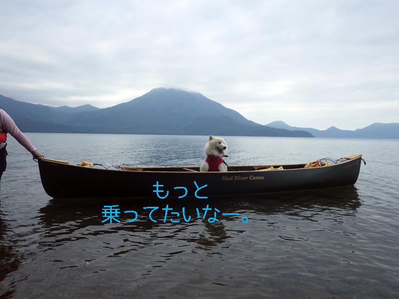 b0146024_1484813.jpg