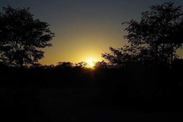 ナミビアの旅(37) エトーシャ国立公園のサファリドライブ(1)_c0011649_2038582.jpg