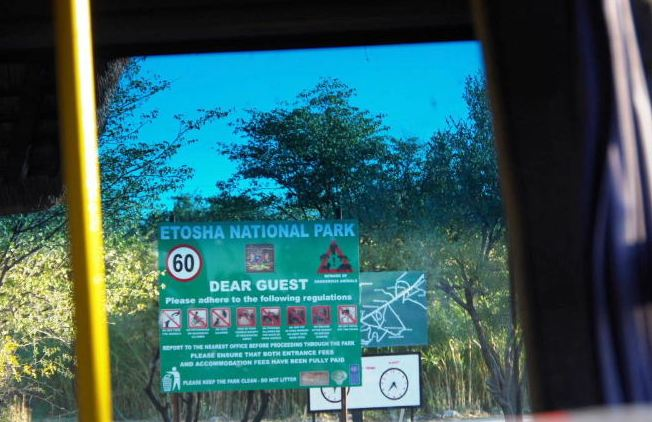 ナミビアの旅(37) エトーシャ国立公園のサファリドライブ(1)_c0011649_21521113.jpg