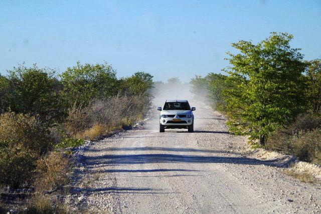 ナミビアの旅(37) エトーシャ国立公園のサファリドライブ(1)_c0011649_23364275.jpg