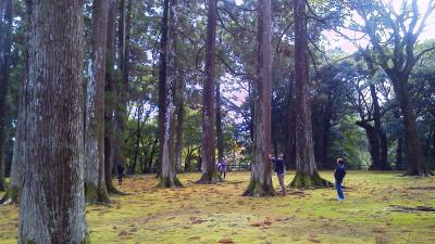 「Sabani trip 2011 特別上映会 in 日南」  レポート_f0138874_18572745.jpg