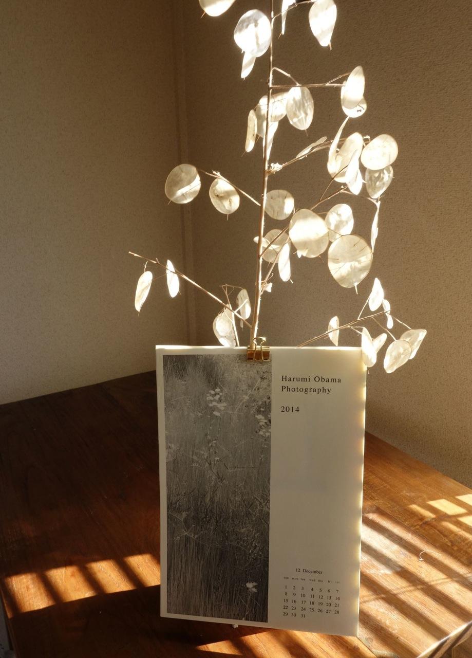 写真家 小浜はるみ氏のカレンダーとフォトブックが入荷しました。 _e0122680_14385748.jpg