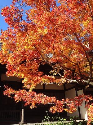 京都旅行_f0220089_18135392.jpg
