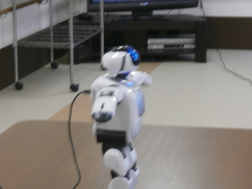 介護ロボット_a0135191_18402240.jpg