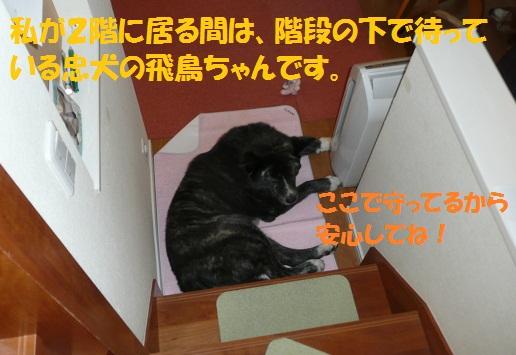 f0121712_14314689.jpg