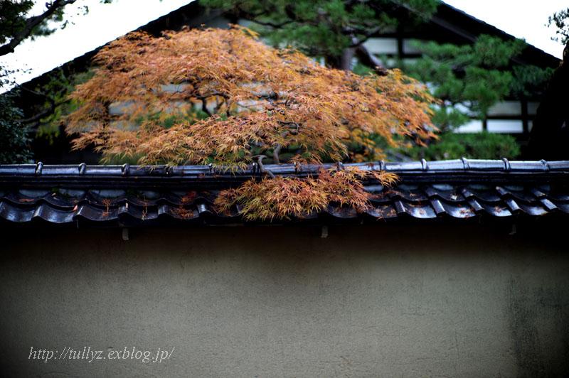 金沢・能登半島の旅(21)_d0108132_0144318.jpg