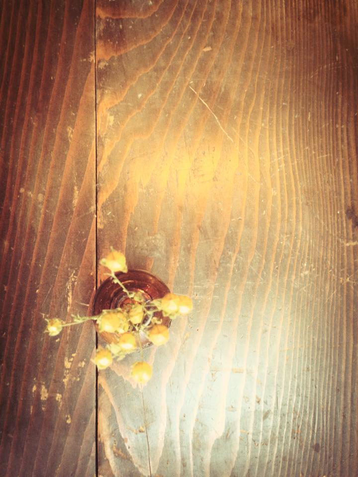 f0193737_17323374.jpg