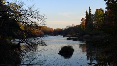 井の頭公園の夕暮れ_b0074416_19535175.jpg